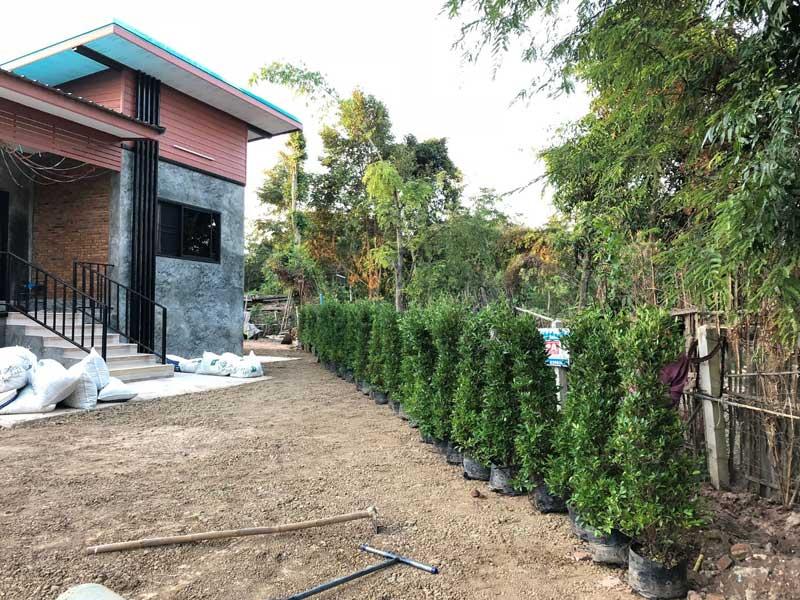 จัดสวนหย่อมหน้าบ้านสไตล์ลอฟท์
